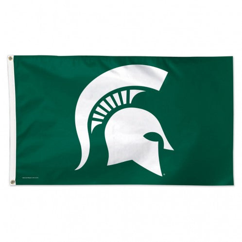 Michigan State University Flag