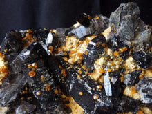 Spessartine Spessartite Garnets on Black Smoky Quartz Crystal Cluster Mineral Specimen - GA10183