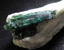 Natural Blue Green Bicolor Tourmaline Quartz Crystal Mineral Specimen TMLW10110