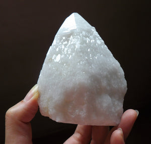 White Alligator Quartz Elestial Crystal Point Terminated Cluster Mineral Specimen CQ10201