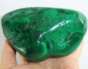Congo Malachite Polished Stone Healing Crystal With Display Wood Stand