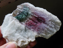 Natural Tricolor Watermelon Tourmaline Quartz Crystal Mineral Specimen TMLW10100
