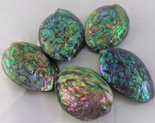 5 Natural Polished Rainbow Paua Abalone Whole Shell Pendants