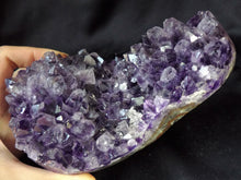 Brazil Amethyst Crystal Geode Mineral Specimen W/ Display Stand AM10199