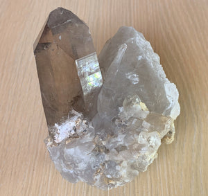Clear Smoky Quartz Crystal Point Geode Cluster Mineral Specimen SQ10120