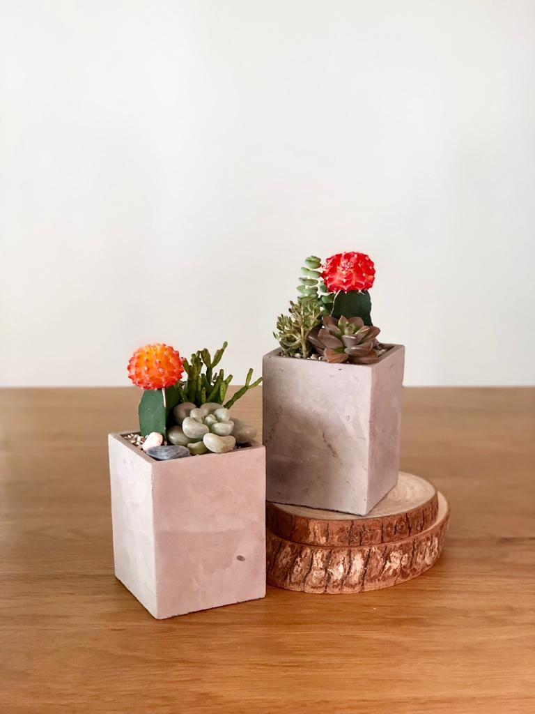 Cement Tall Square Pot