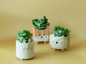 Animal Planter Set of 3