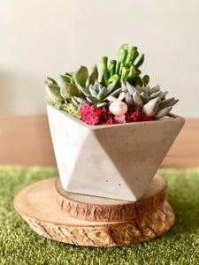 Cement Faceted Pot
