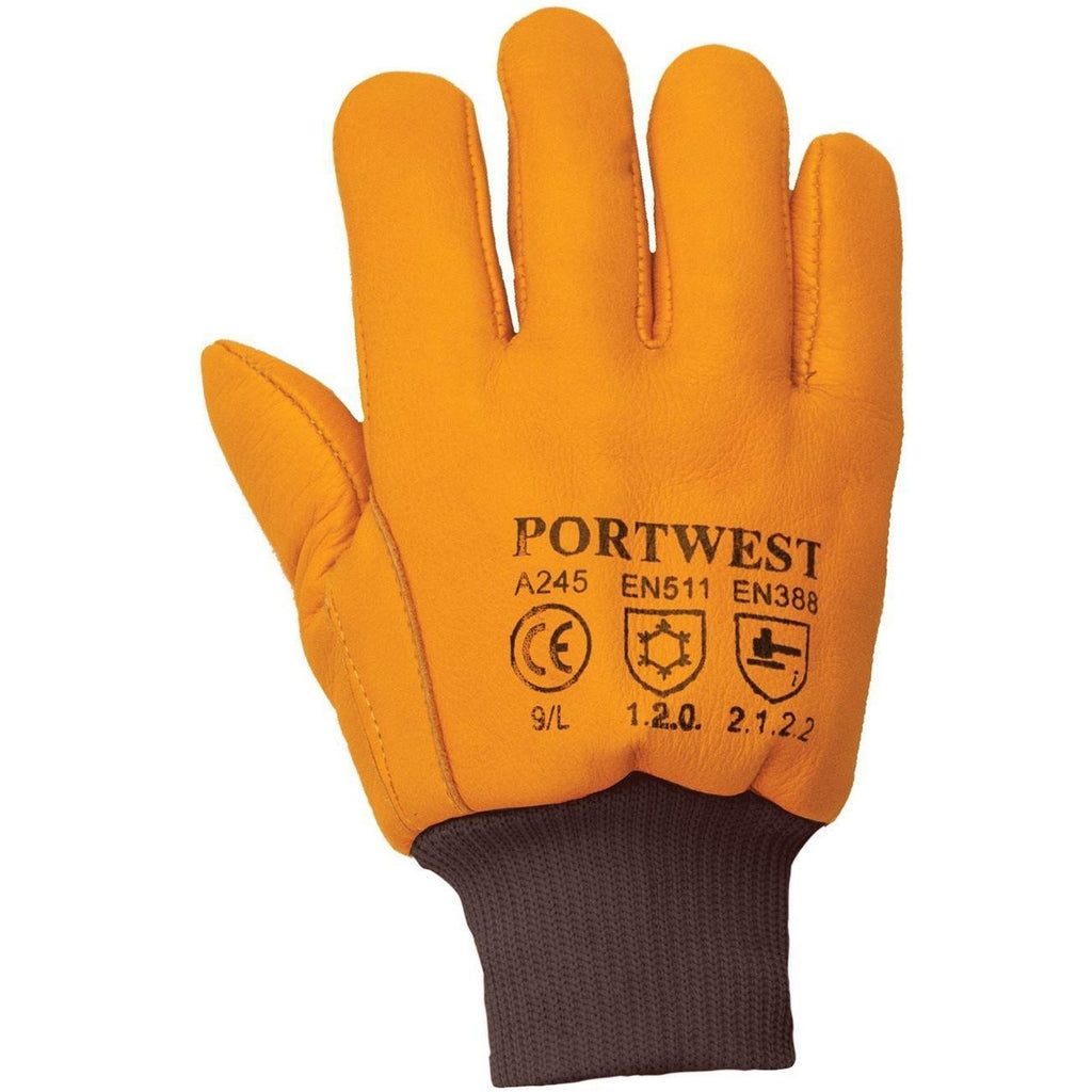 Portwest Antarctica Insulatex Glove A245