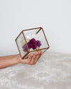 DEEP PURPLE Infinity RosesⓇ Arrangement - Verre Carré | Brass Cube Terranium