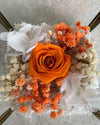 orange infinity roses in brass cube terranium