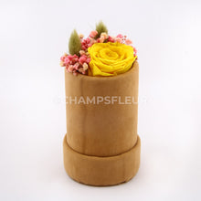Yellow Forever Rose in Suede Flower Box