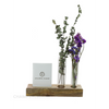 Dried flower Product Image upload - Customer's Product with price 2250.00 ID R5nnZo_ZAu040FO1Fx9yxamq