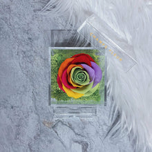 Comme le Verre Une in Rainbow