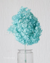 Natural Light Blue Hydrangea with Stem (Preserved)