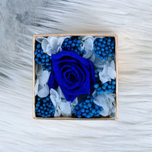 Single Preserved Long Lasting Rose in a Box - Petite Lumiere