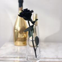 Single Long Stem Black Rose - Solitaire In Black