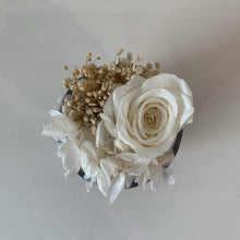 Verre Gris - White Rose