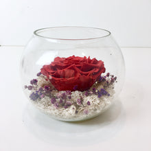 Crimson Red Long Lasting Rose in a Bowl - Verre Merve - Crimson Red