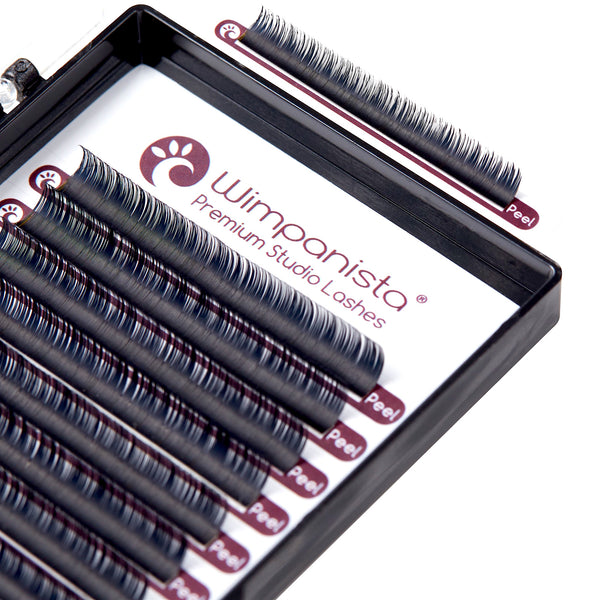 Easy Fan Lashes D Curl 0.07 mm Einzellängen