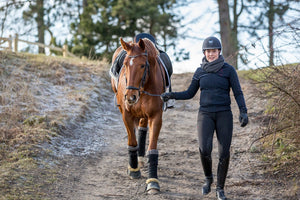How To Keep Your Horse Happy And Motivated