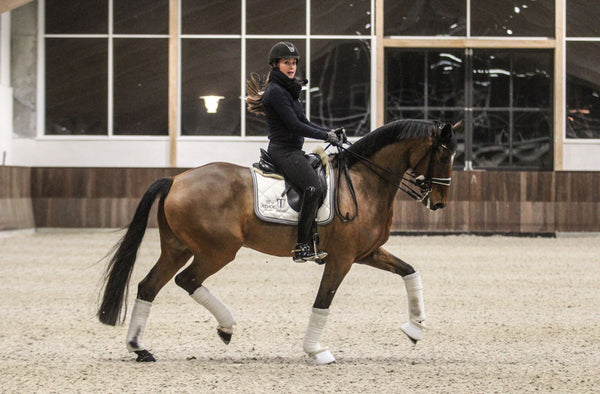 Cathrine Dufour Zundance Young Horse