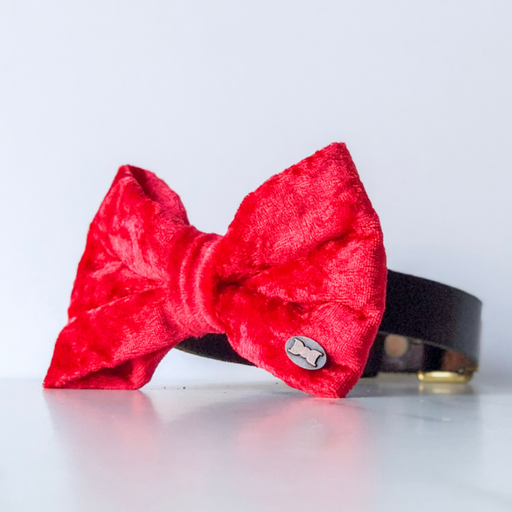 Red Velvet bow tie in large