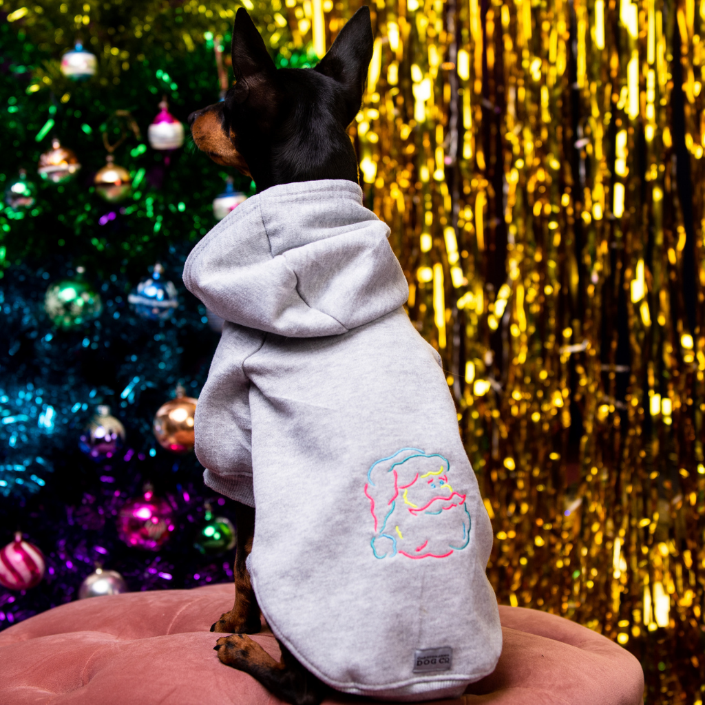 Father Christmas Embroidered Dog Hoodie