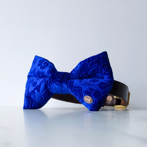 Embossed Blue Velvet Dog Bowtie in Large