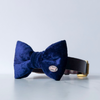 Navy blue velvet dog bow tie in small