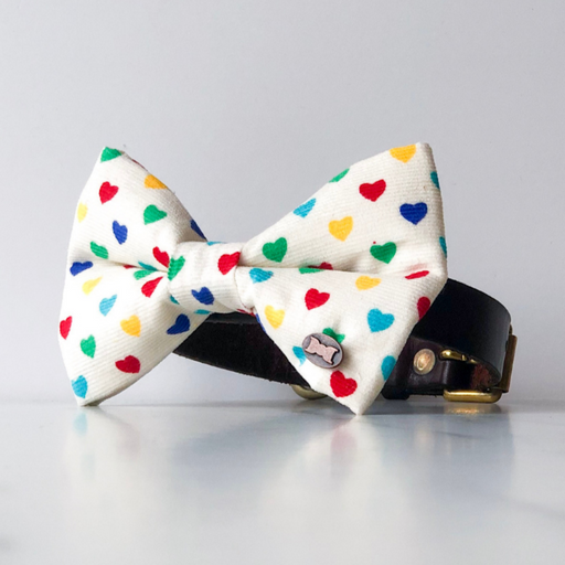 Rainbow heart dog bow tie in large