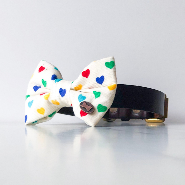 Rainbow heart dog bow tie in small