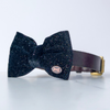 Rainbow and velvet dog bow tie in small