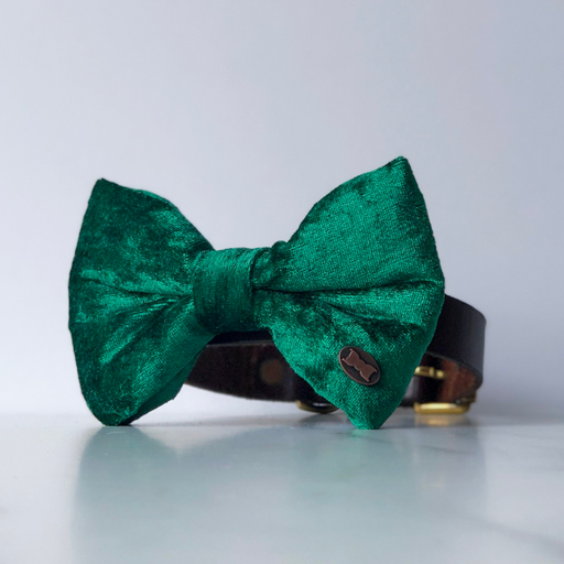 Green velvet bow tie in large