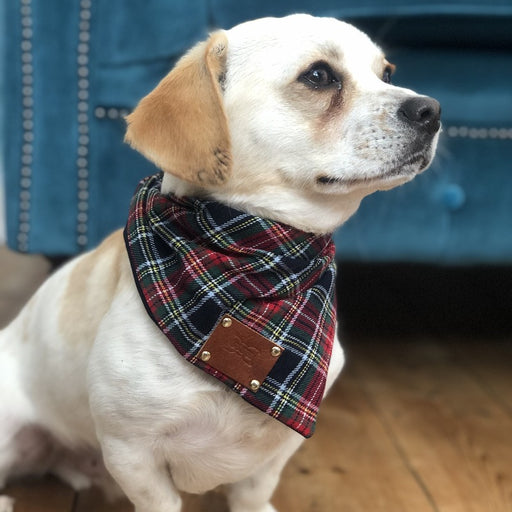 Moray Tartan Dog Bandana Neckerchief