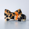 Neon orange and leopard dog bow tie in small