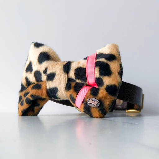 Neon pink and leopard dog bow tie in large