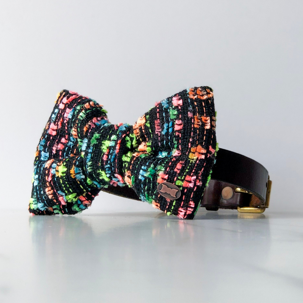 Neon Rainbow Boucle Dog Bow Tie