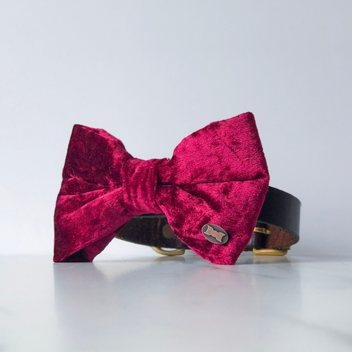 Dark red velvet dog bow tie in large