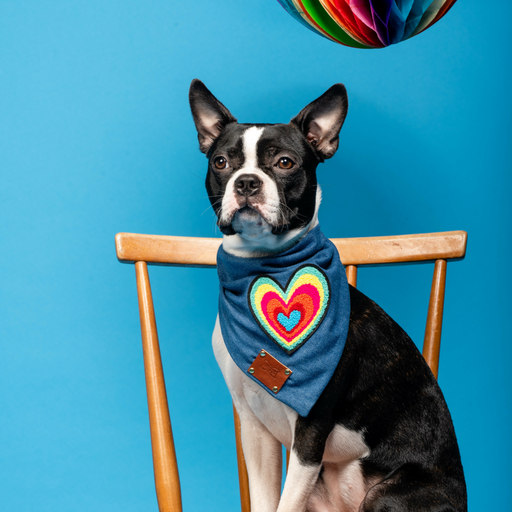 Love Dog Bandana Neckerchief