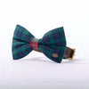 Blue and green tartan bow tie for a dog