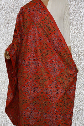 Rust Red Block Printed Hand Embroidered Kantha Silk Dupatta