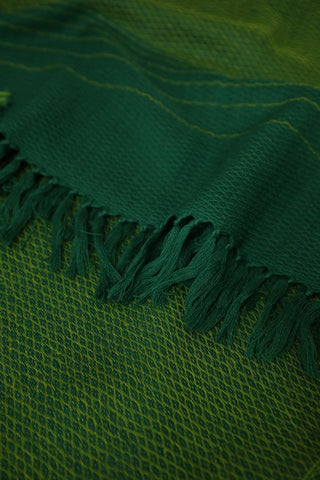 Yellowish Green Woolen Stole