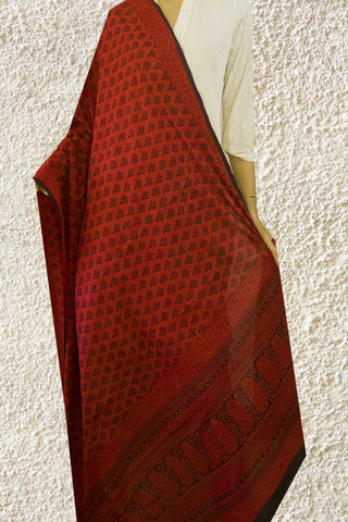 Bagh Block Printed Mul Cotton Dupatta
