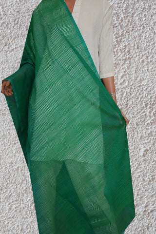 Blue and Green Missing checks Handwoven Cotton Dupatta