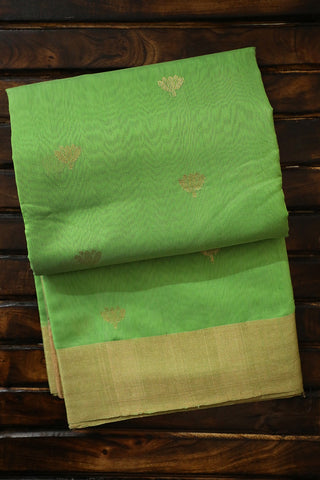 Pista Green Lotus Motif  Chanderi Silk Cotton Saree