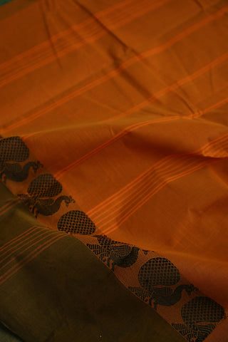 Honey Brown Kanchi Cotton Saree