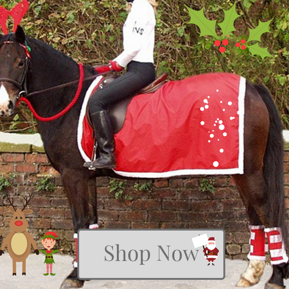 Equestrian Christmas at Kola-Beanz