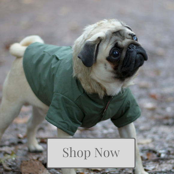 Dog Coat Collection - Kola-Beanz