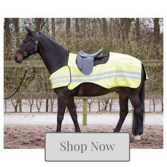 Horse Exercise Rug Collection - Kola-Beanz